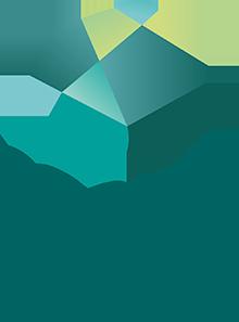 Logo van NPI